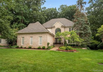Commerce Twp Single Family Home For Sale: 5550 Huron Hills Drive