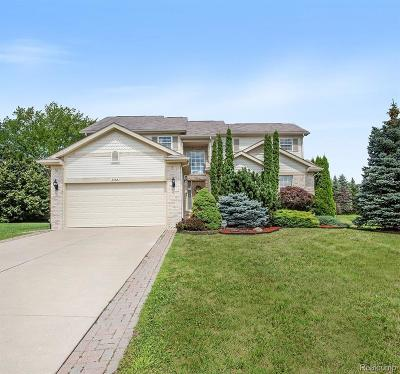 Ann Arbor Single Family Home For Sale: 3065 Fenview Drive