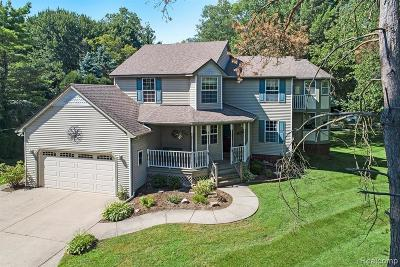 Hartland Twp Single Family Home For Sale: 13981 Plover Drive