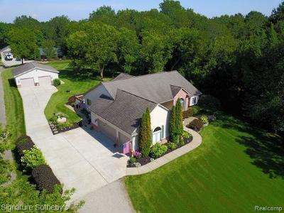 Brandon Twp Single Family Home For Sale: 2871 S Hadley Road