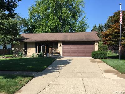 Livonia Single Family Home For Sale: 14217 Ramblewood Street