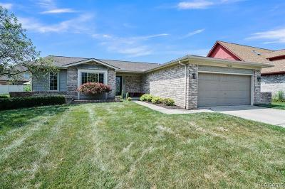 Sterling Heights Single Family Home For Sale: 40523 Denbigh Drive