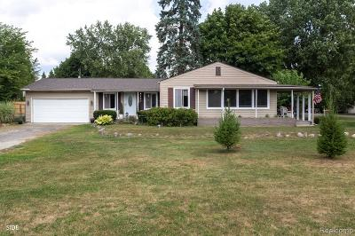 Romeo Vlg, Bruce Twp, Washington Twp Single Family Home For Sale: 63021 Fritz Drive