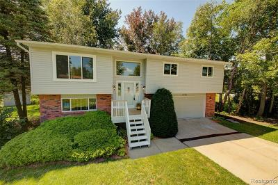 Waterford Single Family Home For Sale: 6161 Gordon Rd