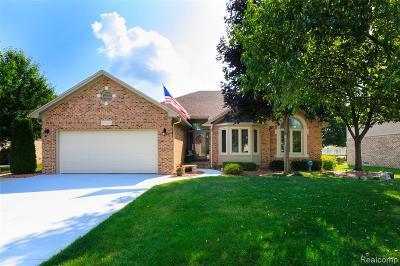 Washington Twp Single Family Home For Sale: 57798 Karam Avenue