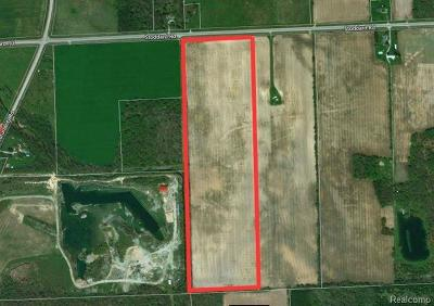 Huron Twp Residential Lots & Land For Sale: Stoddard Road