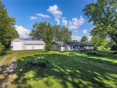 Oakland County Single Family Home For Sale: 4150 Haven Road
