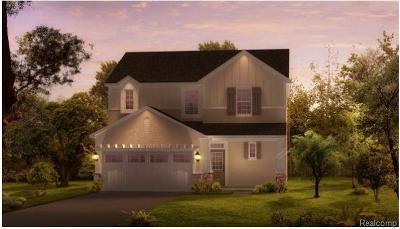 Novi Single Family Home For Sale: A00 Vl Novi Road