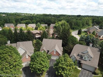 Farmington Hills Condo/Townhouse For Sale: 30729 Tanglewood Trail