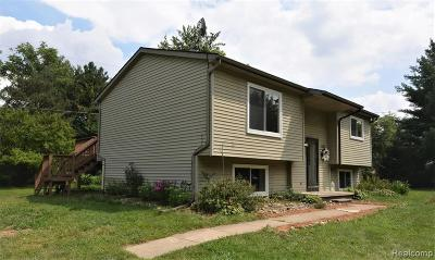 White Lake Single Family Home For Sale: 4860 McKeachie Road
