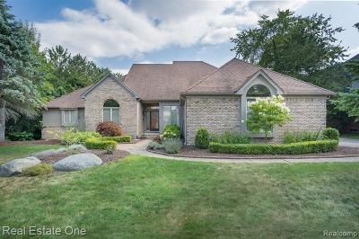 Rochester, Rochester Hills Single Family Home For Sale: 1586 Stony Creek Drive
