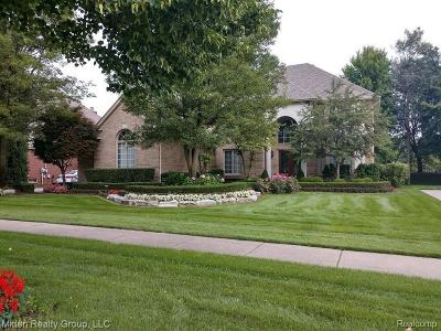 Shelby Twp Single Family Home For Sale: 13341 Towering Oaks Drive