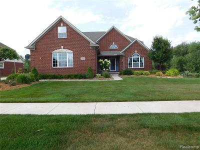 Lyon Twp MI Single Family Home For Sale: $475,000
