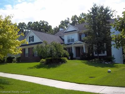 White Lake Twp Single Family Home For Sale: 8937 El Dorado Drive