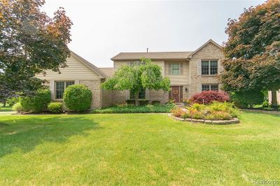 Novi Single Family Home For Sale: 24545 Picara Drive