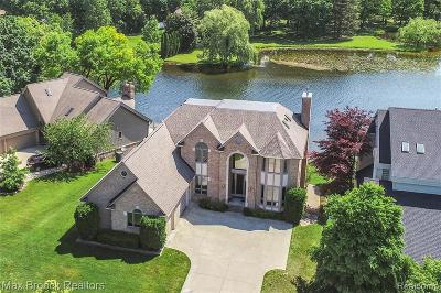 Waterford Single Family Home For Sale: 3654 Lakeshore Drive