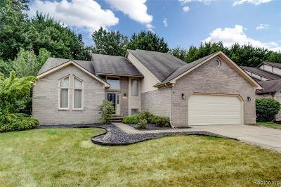 Macomb Twp Single Family Home For Sale: 16012 Mountainside Drive