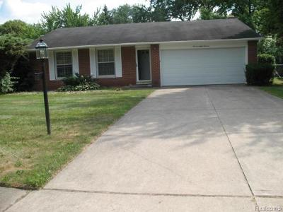 Southfield Single Family Home For Sale: 19819 Northbrook Drive