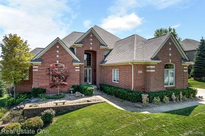 Oakland Twp Single Family Home For Sale: 587 Parkland Hills Drive