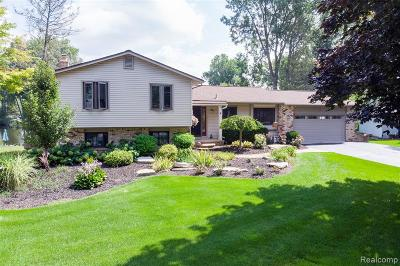 White Lake Twp Single Family Home For Sale: 971 Artdale Drive