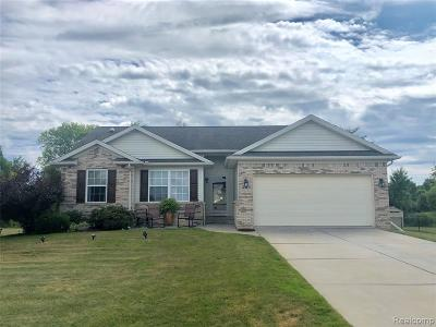 Single Family Home For Sale: 4325 Pondview Drive