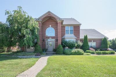 Troy Single Family Home For Sale: 4668 Scotch Pine Drive