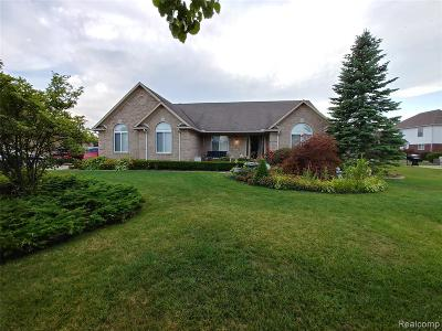 Brownstown Twp, Flat Rock Single Family Home For Sale: 25738 Brookview Boulevard