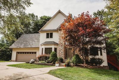 Single Family Home For Sale: 1549 Lake Metamora Drive