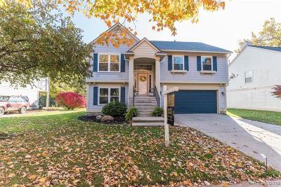 Auburn Hills Single Family Home For Sale: 929 Huntclub Blvd.