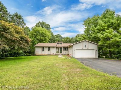 Clarkston, Oxford Twp, Oxford Vlg, Metamora Twp, Lake Orion Vlg, Lake Orion, Orion Twp Single Family Home For Sale: 1200 S Baldwin Road