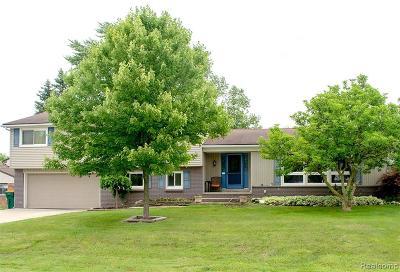 Farmington Hills Single Family Home For Sale: 29223 Glencastle Court