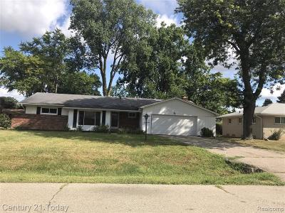 Southfield Single Family Home For Sale: 23818 Hazen