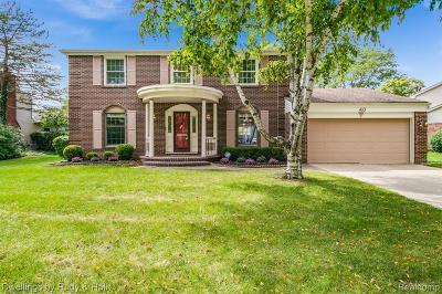 Northville Single Family Home For Sale: 453 Morgan Circle