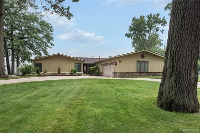 West Bloomfield Twp Single Family Home For Sale: 7942 Flagstaff Street