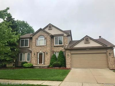 Brownstown Twp, Flat Rock Single Family Home For Sale: 27482 Mill Creek Drive