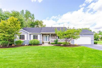 Lake Orion, Orion Twp, Clarkston, Independence Twp, Oxford Single Family Home For Sale: 709 Porteous Drive