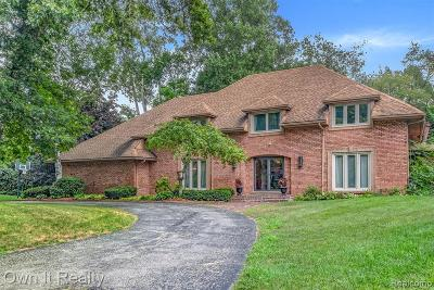 BLOOMFIELD Single Family Home For Sale: 7449 Stony River Court