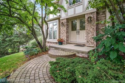 Rochester Hills, Rochester Single Family Home For Sale: 1009 Valley Stream Drive