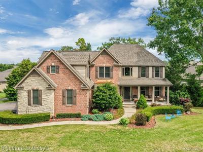 Single Family Home For Sale: 2990 Dana Pointe Drive