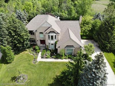 Troy Single Family Home For Sale: 6828 Meadow Court