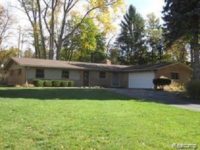 Novi Single Family Home For Sale: 43440 Cottisford Street