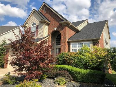 Oakland County, Wayne County Single Family Home For Sale: 50269 Cressnut Court