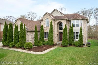 Rochester Hills, Rochester Single Family Home For Sale: 3249 Grand Park Drive