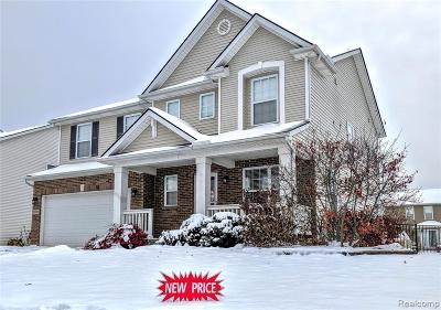 Huron Twp Single Family Home For Sale: 31305 Handsomer Drive