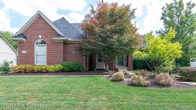 Novi Single Family Home For Sale: 30416 Norwich Dr