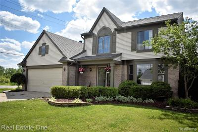 Brownstown Twp, Flat Rock Single Family Home For Sale: 22938 Sherry Drive