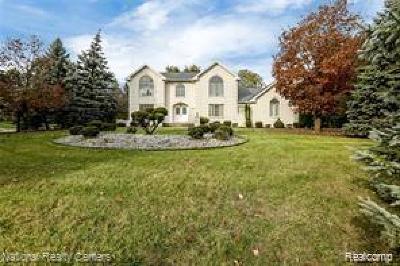 Livonia, Redford Twp, Farmington Hills, Farmington, Southfield Single Family Home For Sale: 26390 Hidden Valley Drive