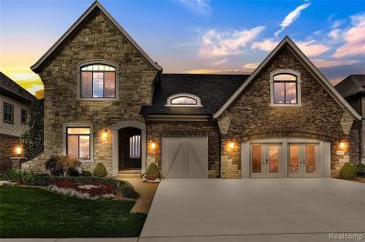 Macomb Twp Single Family Home For Sale: 21847 Christenbury Creek