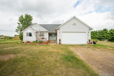 Single Family Home For Sale: 6533 Lyons Road