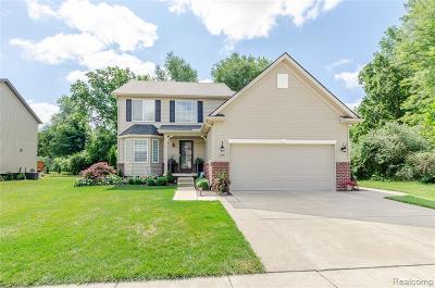New Boston, Huron Twp Single Family Home For Sale: 37459 Dianne Lane